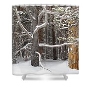 Tree Talk Shower Curtain