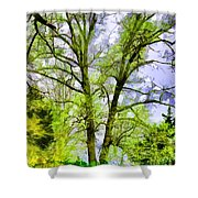 Tree Tops Iv Shower Curtain
