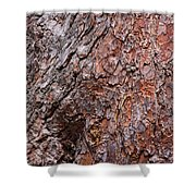 Tree Trunk Abstract Shower Curtain
