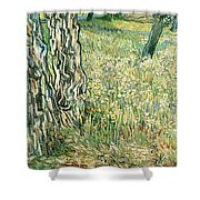 Tree Trunks In Grass Shower Curtain