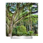 Tree-waimea Arboretum Shower Curtain