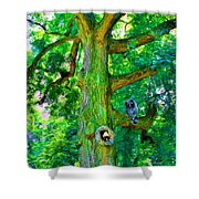 Tree With Owl Gnome And Mushroom Shower Curtain