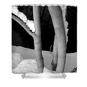 Tree With Snow Shower Curtain