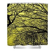 Trees Abstarct Yellow Shower Curtain