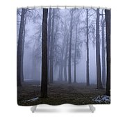 Trees Along Greenlake In Fog Shower Curtain