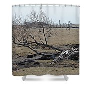 Trees And Early Spring Creek Shower Curtain
