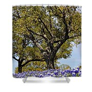 Trees And Flowers Shower Curtain