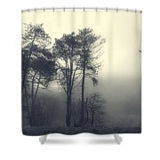 Trees And Fog At Castle Hill Shower Curtain
