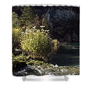 Trees And Plants At The Lakeside Shower Curtain