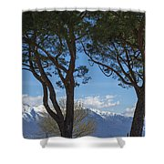 Trees And Snow-capped Mountain Shower Curtain