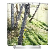 Trees At A Picnic Shower Curtain