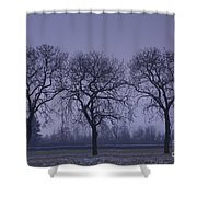 Trees At Night Shower Curtain