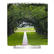 Trees At Oak Alley Plantation Shower Curtain