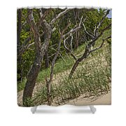 Trees At The Edge Of A Dune At Silver Lake Shower Curtain