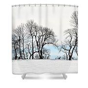 Trees At Tyler Park Shower Curtain