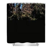 Trees Covered With Monarch Butterflies Shower Curtain
