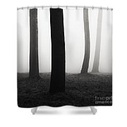 Trees Dancing In The Fog Shower Curtain