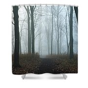 Trees During Autumn In Forest, Dupage Shower Curtain