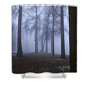 Trees Greenlake With Man Walking Shower Curtain