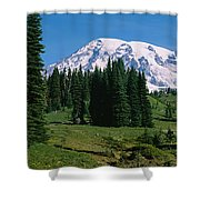 Trees In A Forest, Mt Rainier National Shower Curtain
