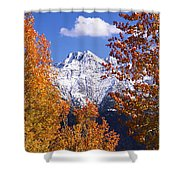 Trees In Autumn, Colorado, Usa Shower Curtain