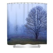 Trees In Fog #2 Shower Curtain