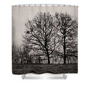 Trees In November Shower Curtain