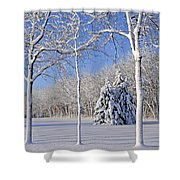 Trees In Snow  Wisconsin Shower Curtain by Anonymous