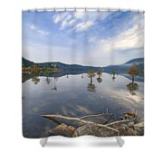 Trees In The Lake Shower Curtain
