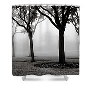 Trees In The Midst No. 06 Shower Curtain