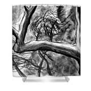 Trees In The Wind Shower Curtain