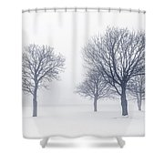 Trees In Winter Fog Shower Curtain