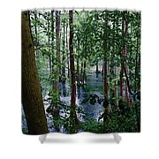 Trees Shower Curtain by Nelson Watkins