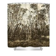 Trees Of Ashburn Shower Curtain