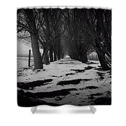 Trees Of The Ida Valley  Shower Curtain