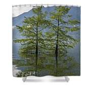 Trees On A Flooding Alpine Lake Shower Curtain