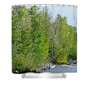Trees On A Lakeshore Shower Curtain