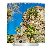 Trees On South Side Of Andreas Canyon In Indian Canyons-ca Shower Curtain