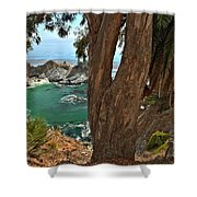 Trees Over Mcway Falls Shower Curtain