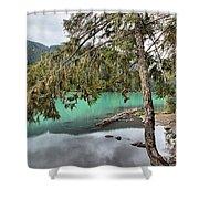 Trees Overhanging Cheakamus Lake Shower Curtain