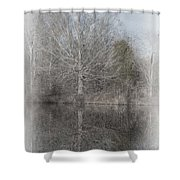 Tree's Reflection Shower Curtain