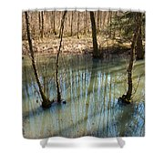 Trees Standing In The Water Shower Curtain