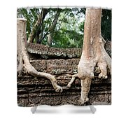 Trees United Shower Curtain