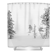 Trees With Hoar Frost Shower Curtain