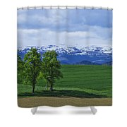 Trees With Mountains Shower Curtain