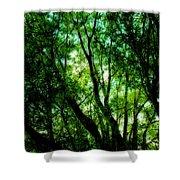 Treetops 1 Shower Curtain