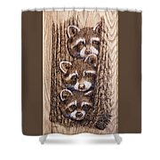 Tres Amegos Shower Curtain