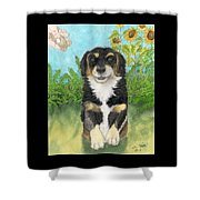 Tri Colored Dachsund Mix Dog Canine Pets Animal Art Shower Curtain
