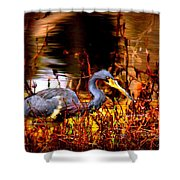 Tri Colored Heron - Reflection Shower Curtain