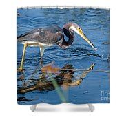 Tri With Fish Shower Curtain